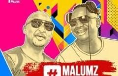 Malumz on Decks - Inkomo Zakhe (Remix) Ft. Akhona